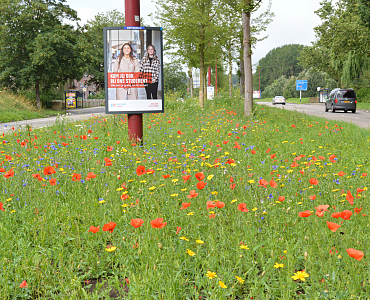 Gemeente Nieuwegein - Zandveldseweg
